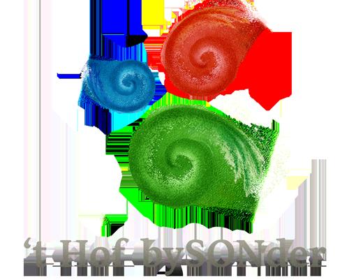bySonder-logo-met-tekst